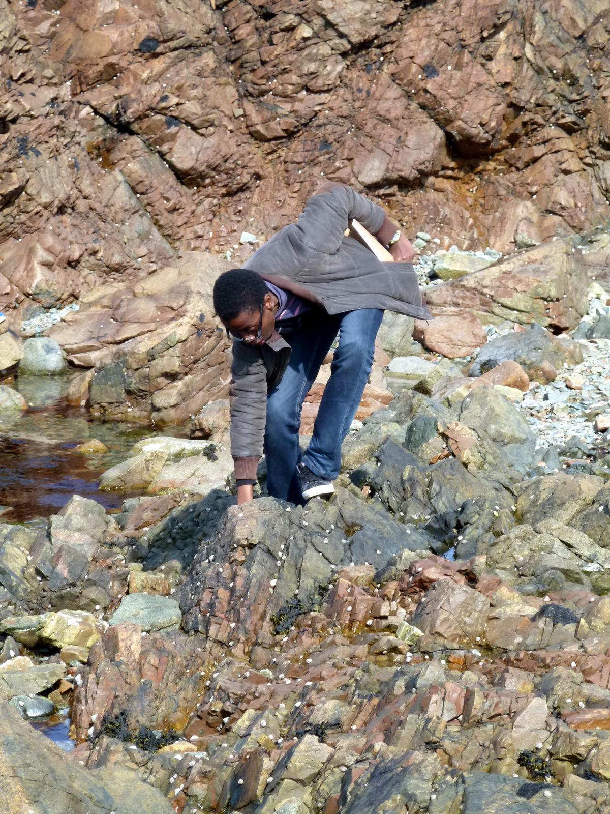 géologie 5ème4 cotentin 16